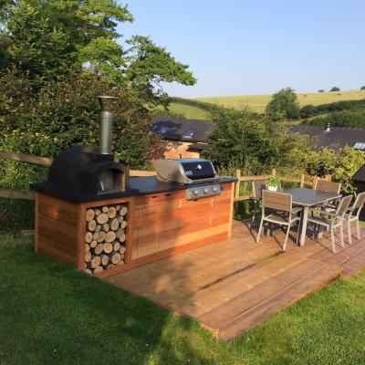Out door custom built bbq and pizza oven
