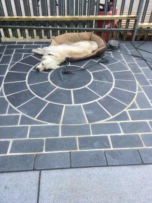 Slate paving design on a patio, circular pattern with a dog!